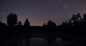 Gwiazdy przysnęły nadnie stawu