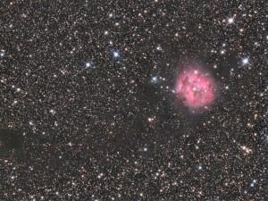 Mgławica Kokon - IC 5146, teleskop Newtona 200/1000, montaż NEQ6, kamera Atik 383L+, filtry R,G,B - 14x300 sekund, Luminancja – 14x600 sekund, obs. Mateusz
